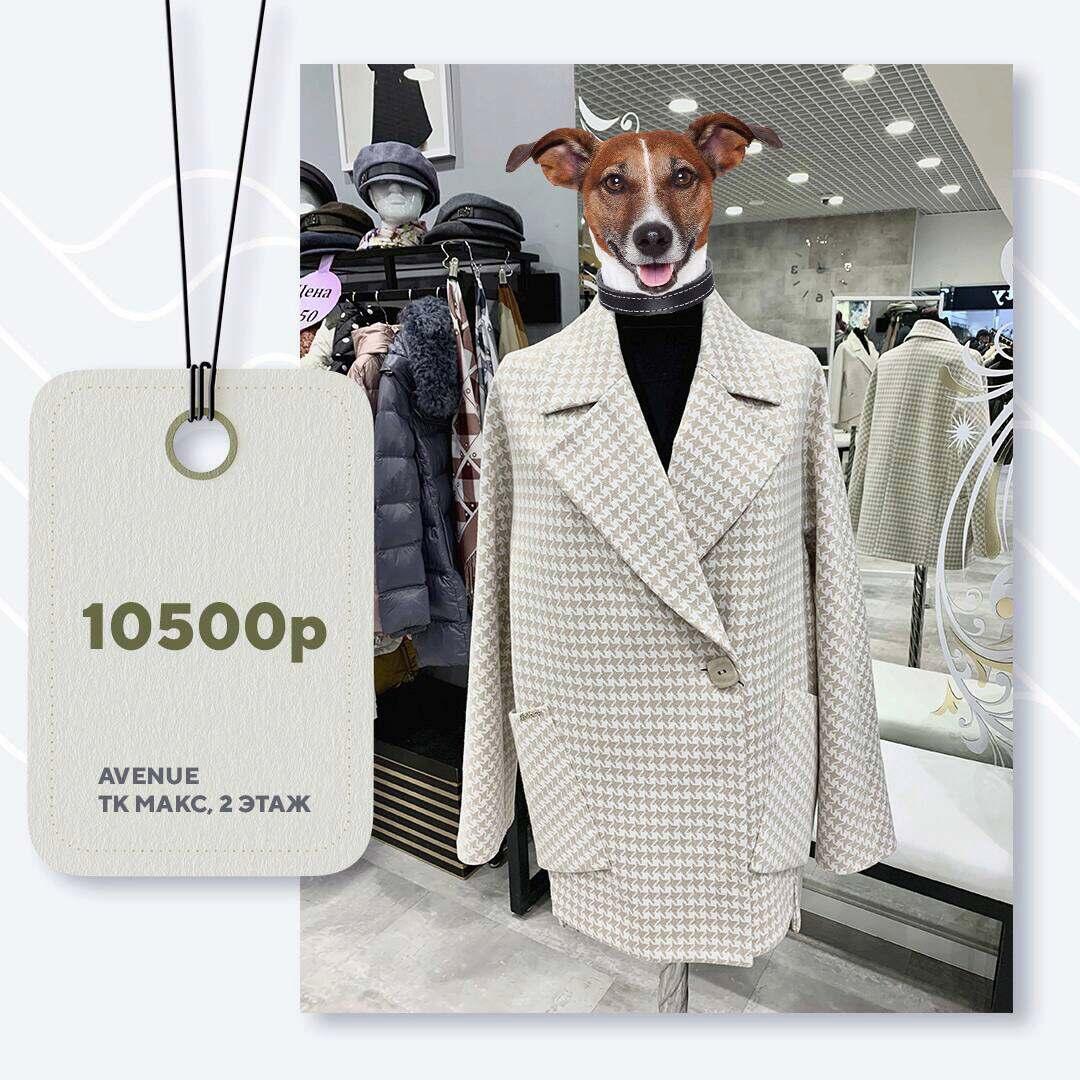 avenue-10500