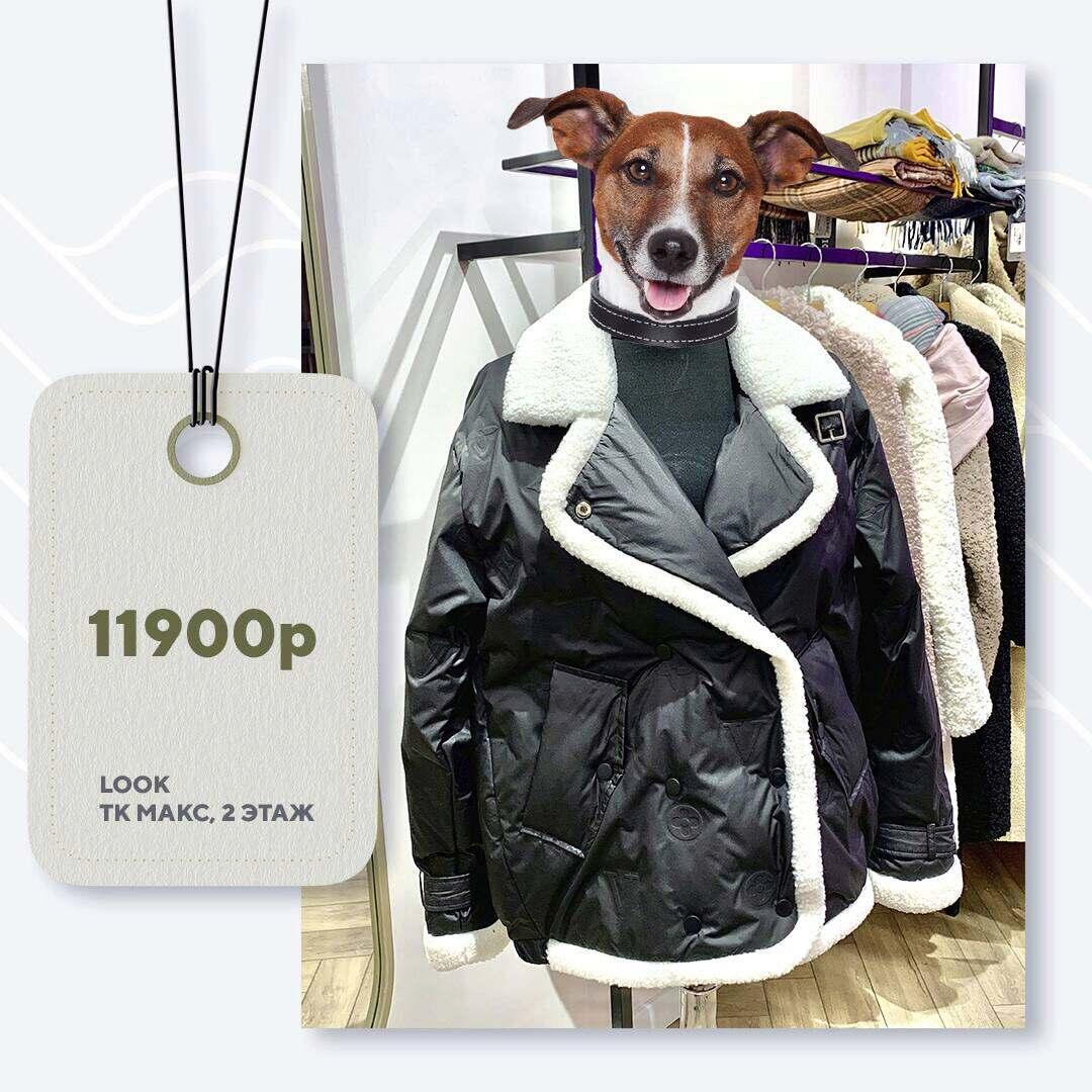look-11900