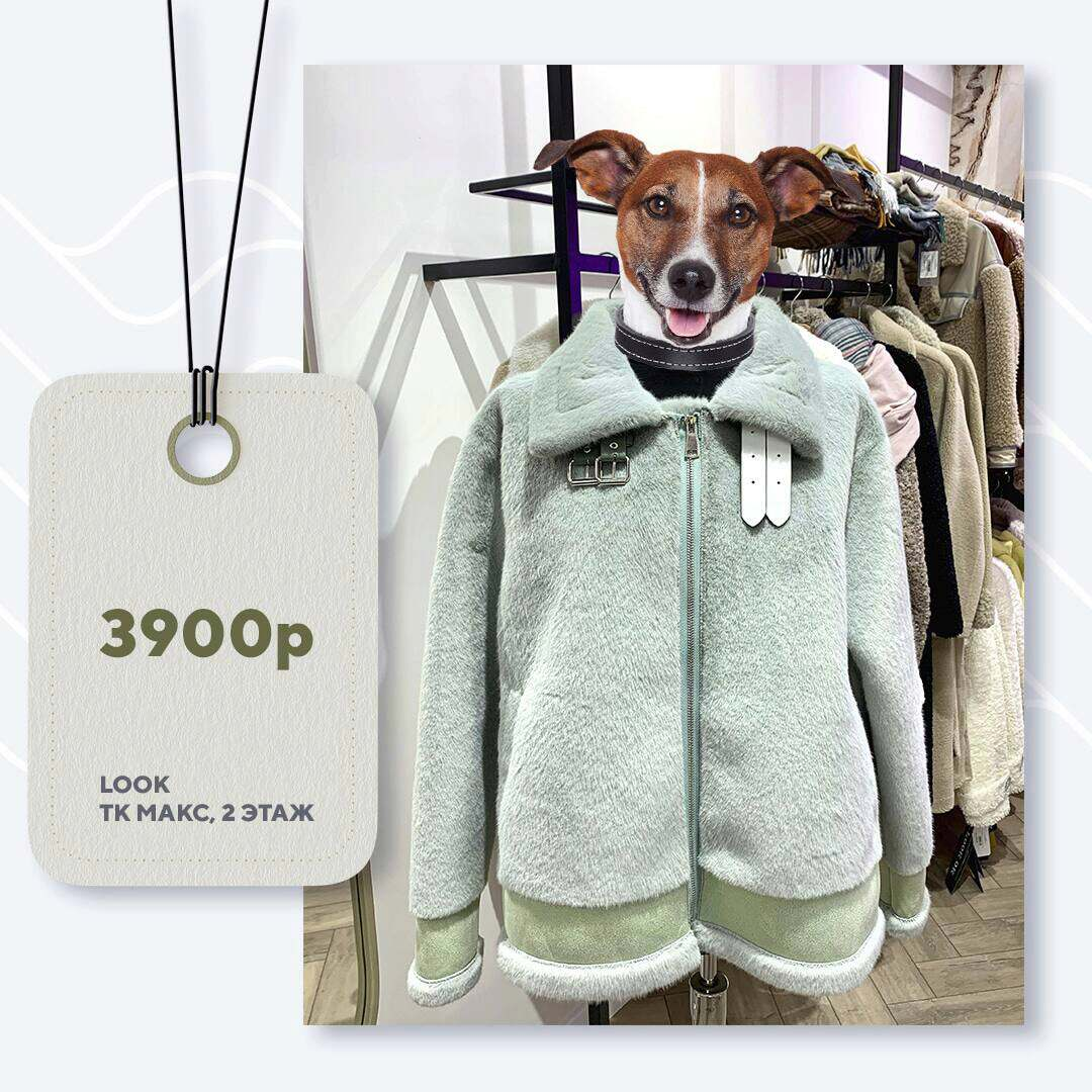 look-3900