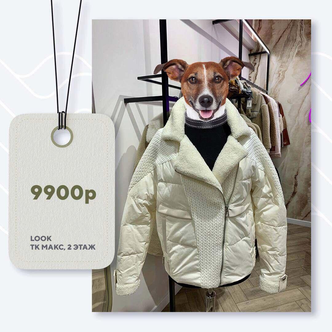 look-9900